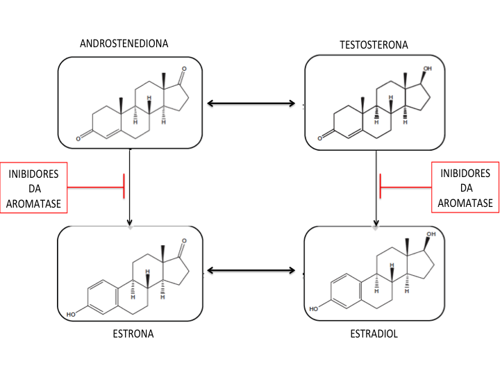 Inibidores de Aromatase